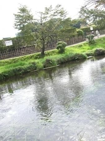 Oshinohakkai
